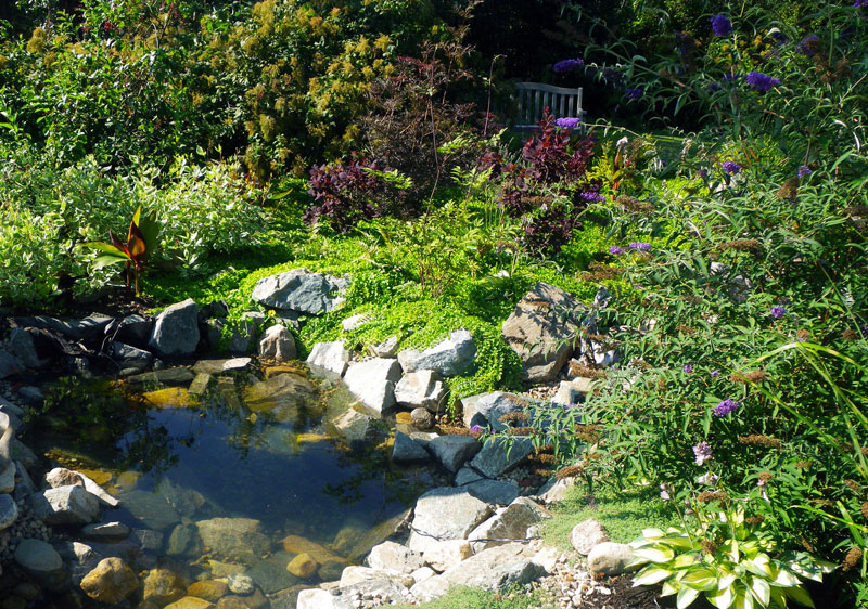 Pond waterfall gallery serenity now landscapes for Pond shade ideas