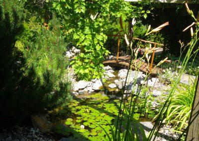 Small pond full of thriving lilies & quaint wood bridge.